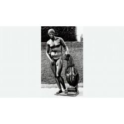 Statua in bronzo - Venere...