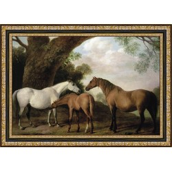 TWO MARES AND A COLT,...