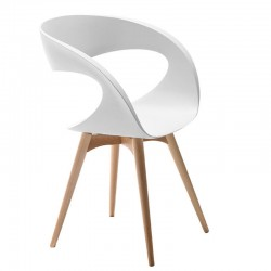 Padded or plastic chair with wood base - Raff