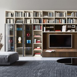 Modo composition bookcase with glass doors