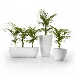 Vases fioriera in resina in...