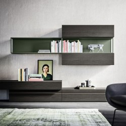 Day 13 bookcase / TV cabinet composition