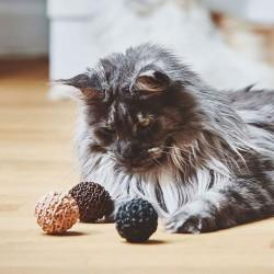 Filo set of 3 cat toy balls