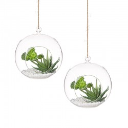 Set 2 Vasi in vetro tondi sospesi - Terrarium